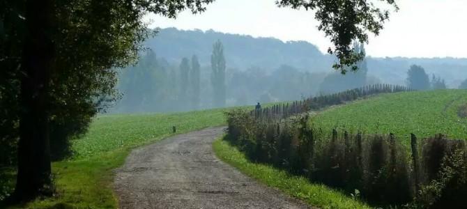 徒步活动第15期 – Vallée de Chevreuse