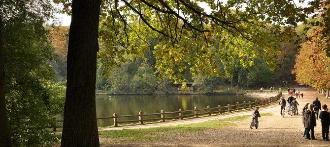 徒步活动第20期 – Malmaison森林
